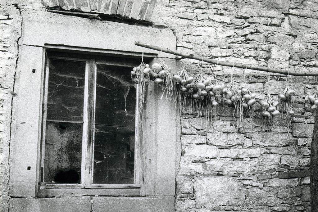 Fenster mit Zweibeln - Grießmühle Kürnach