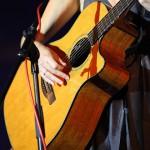 Guitar of Coby Grant in Rimpar - Fotograf Ulf Pieconka