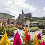 Marktplatz mit Rathaus in Schweinfurt