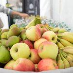 Frisches Obst zum Mittagessen - BUKO 2016 - Fotograf Ulf Pieconka - Würzburg